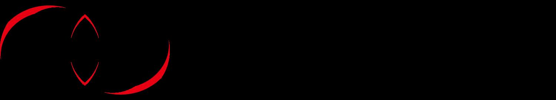 ENZINGロゴ